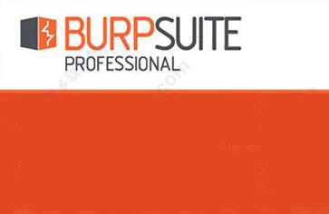 Burp Suite Professional V2.1.07