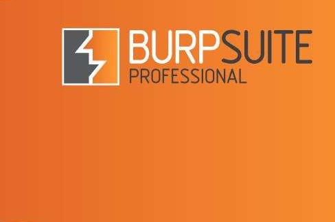 BurpsuiteV2020.5最新版本