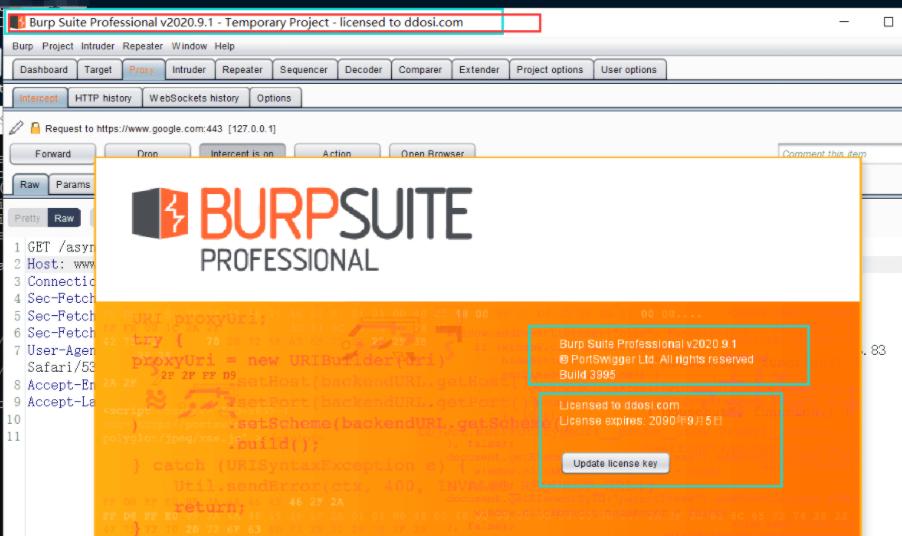 BurpSuiteProfessional-V2020.9.1
